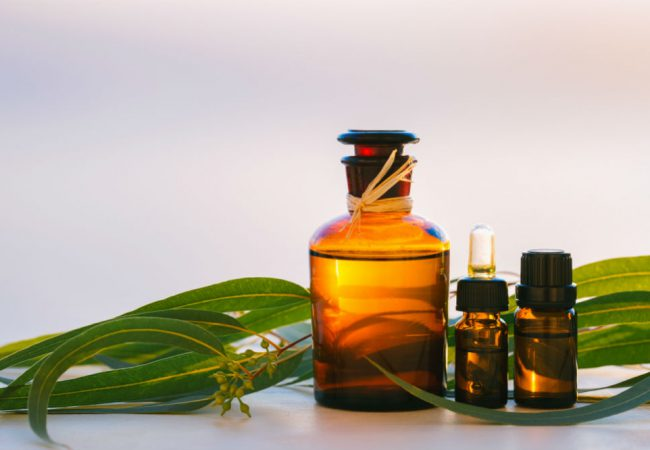 aVo Essentials Eucalyptus Essential Oil: The Essentials of Aromatherapy